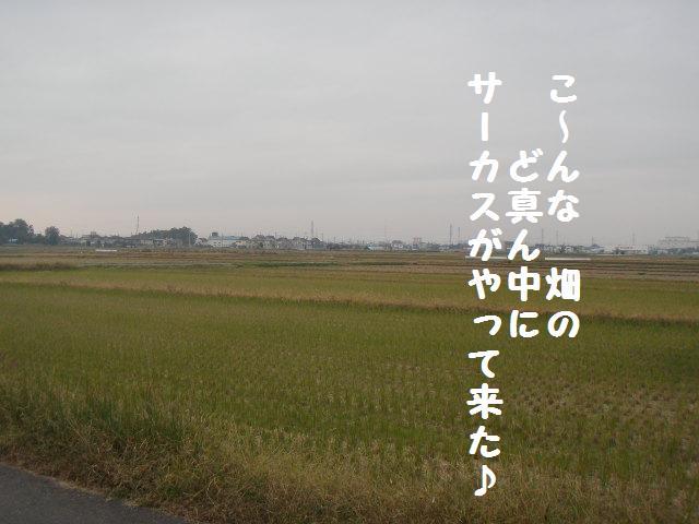 Pb085822