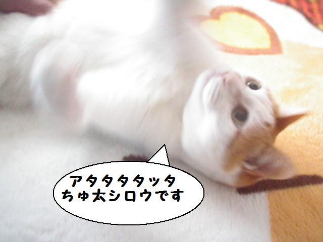 20100110_04