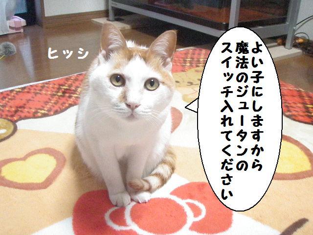 20100110_01