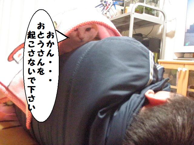 20100124_03