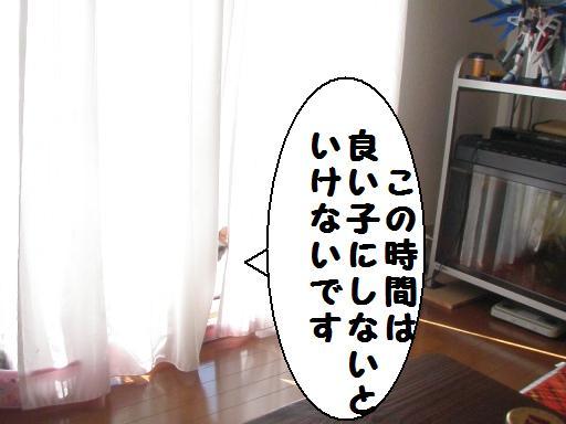 20100207_01