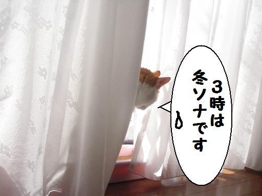 20100207_07