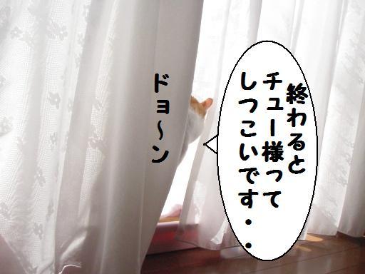 20100207_08