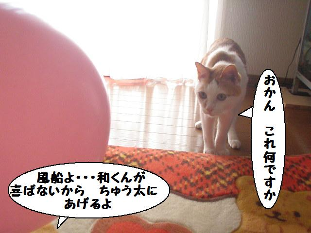 20100314_42