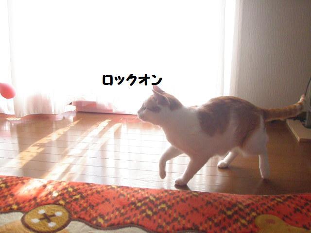 20100314_50