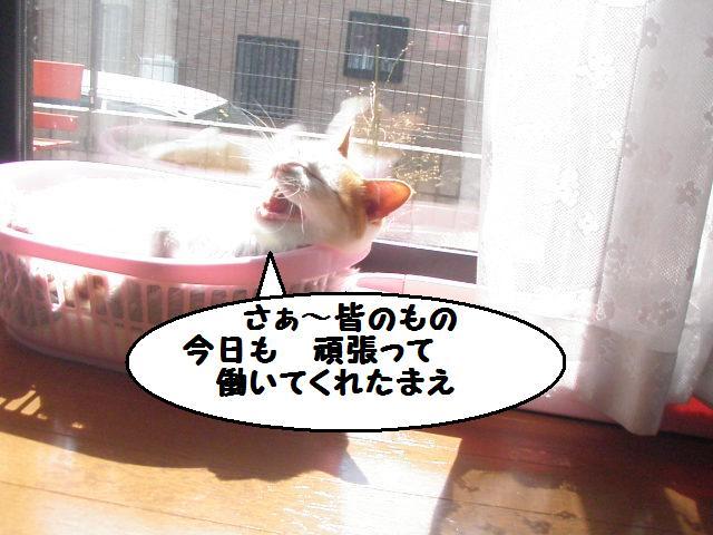 20100322_05_2