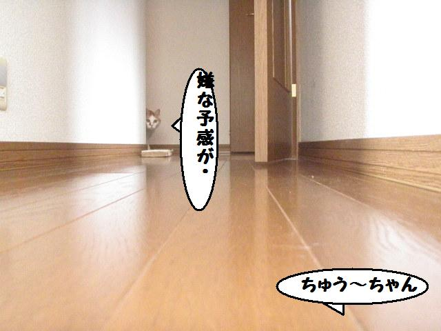 20100404_09