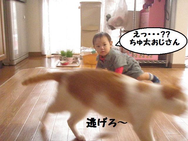 20100407_105