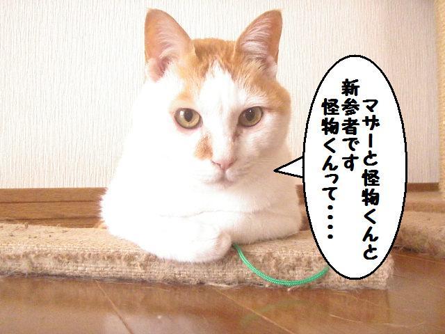 20100414_07_2