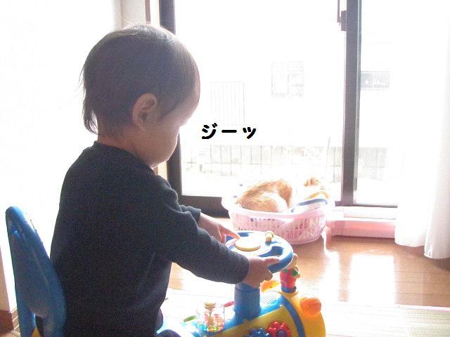 20100524_470
