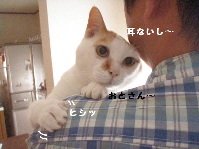 20100605_06_2