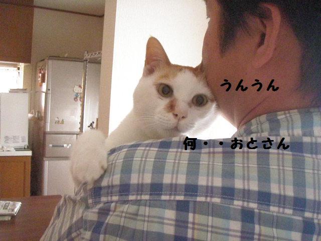 20100605_17_2