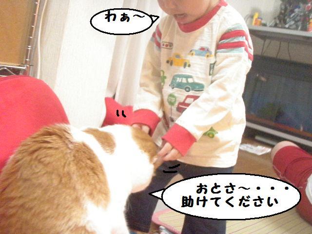 20100613_464_2