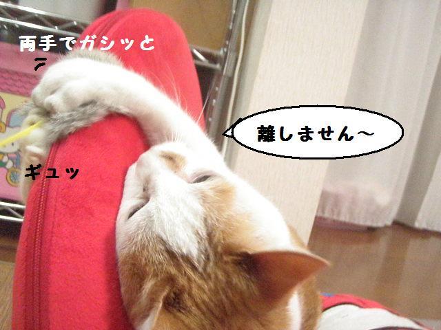 20100613_556_2