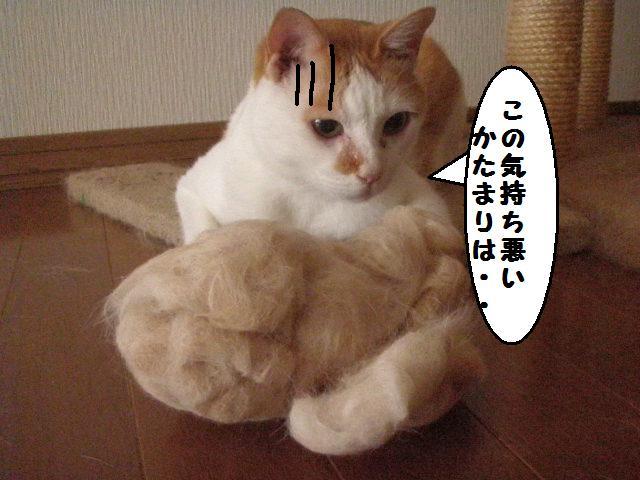20100622_28