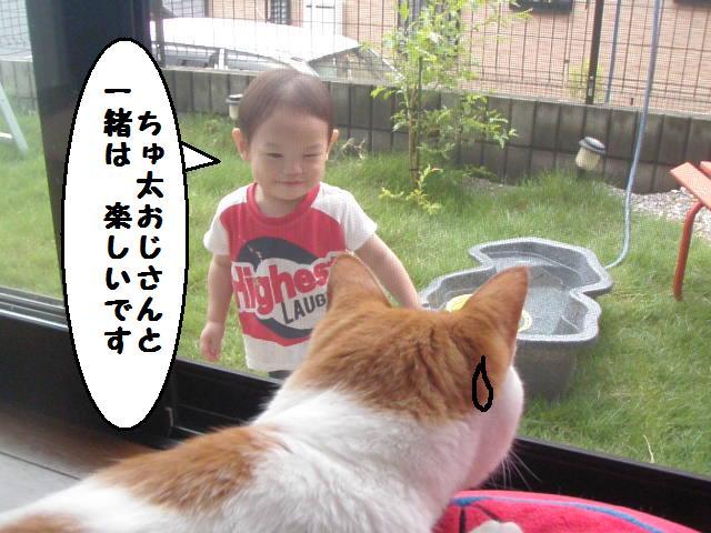 20100705_304_2