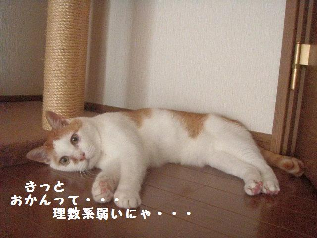 20100724_09