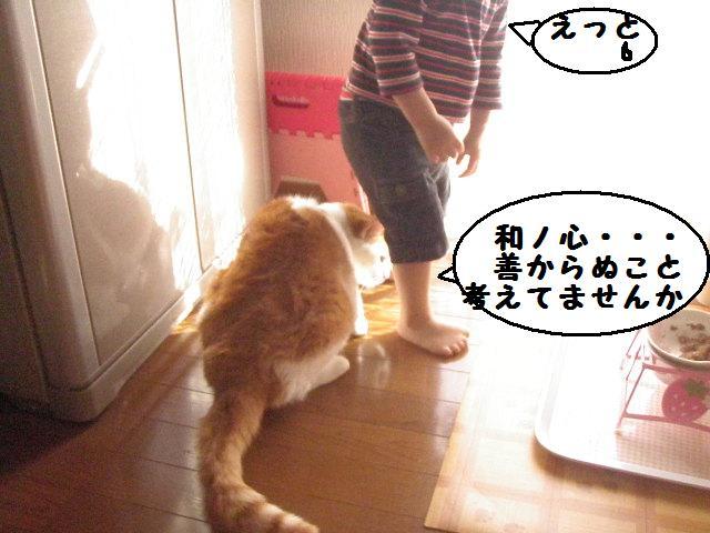20101001_145