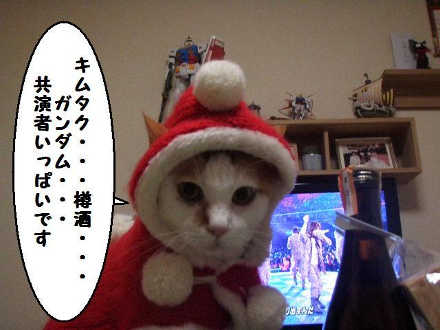 20101224_17