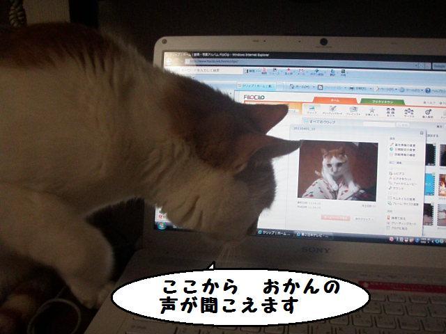 20110405_01_01